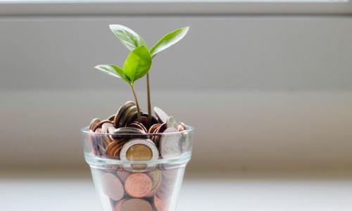 Photo of a leafy twig growing out of a glass jar of coins